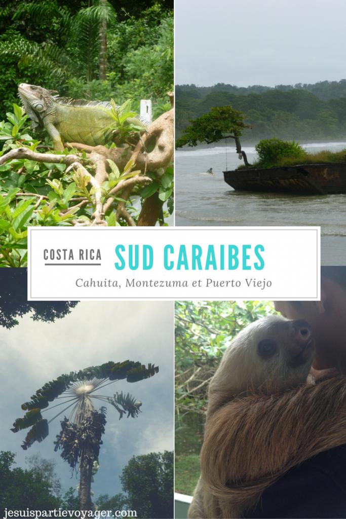 miniature pinterest visiter cote caraibes costa rica