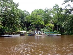 tortuguero canal habitation