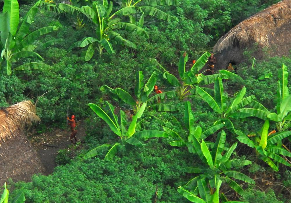 tribu non contactees amazonie