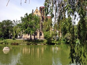 église st john stuttgart arbres