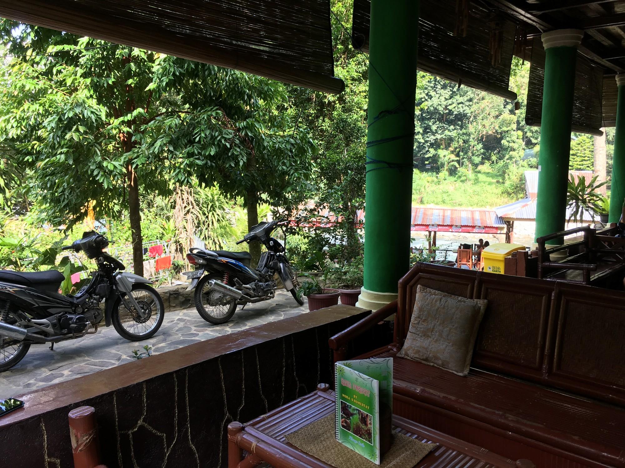 nora-homestay-bukit-lawang-sumatra
