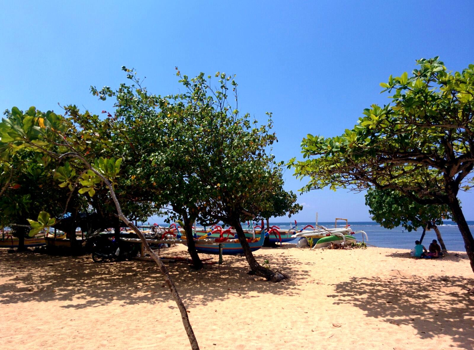 plage-sanur-bali-arbres
