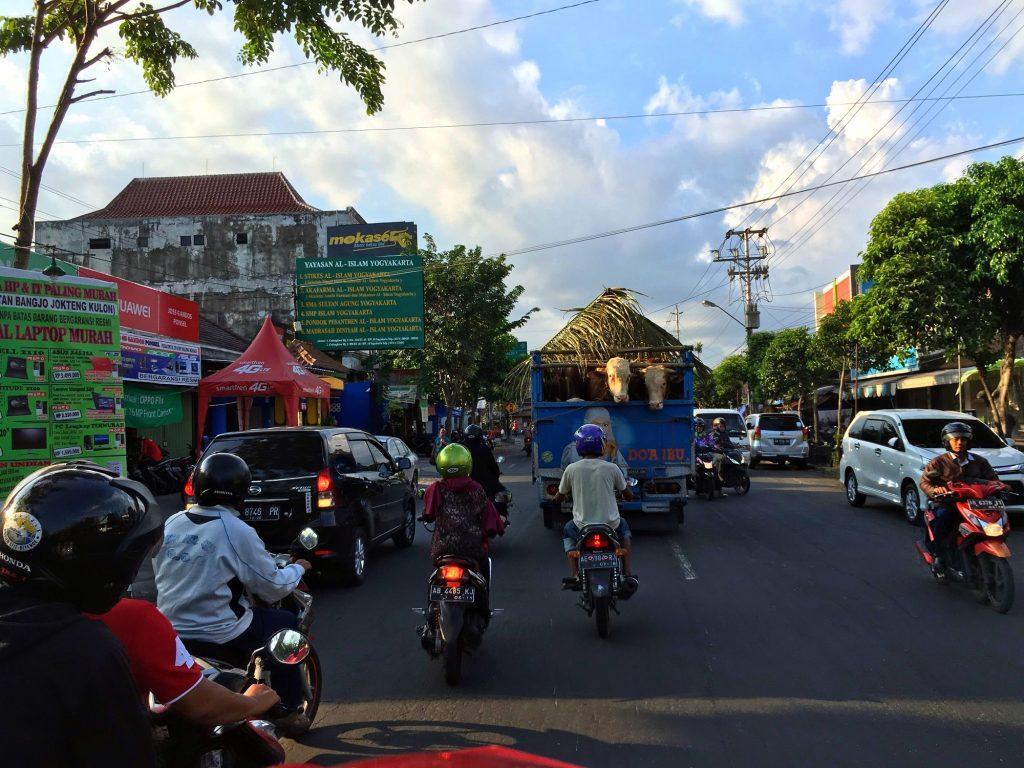 trafic-scooter-yogyakarta-indonesie