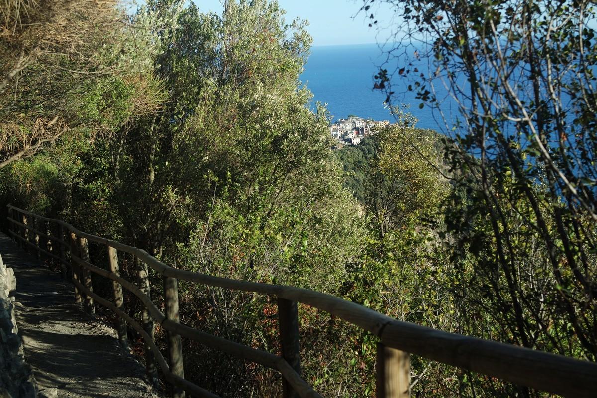vue du chemin de randonnée sur corniglia une étape à faire pendant votre visite des cinque terre